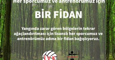 Yanan Ormanların Yeşile Dönmesi